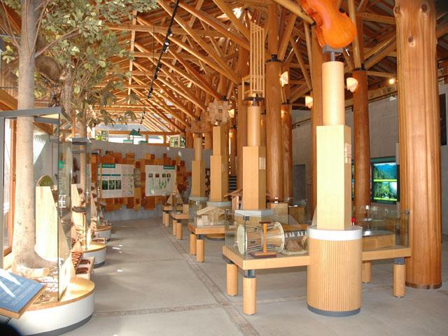 埼玉県森林科学館2